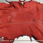 چرم شترمرغ سارارمین صادراتی