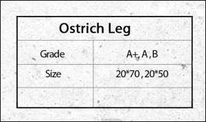 ostrich leg
